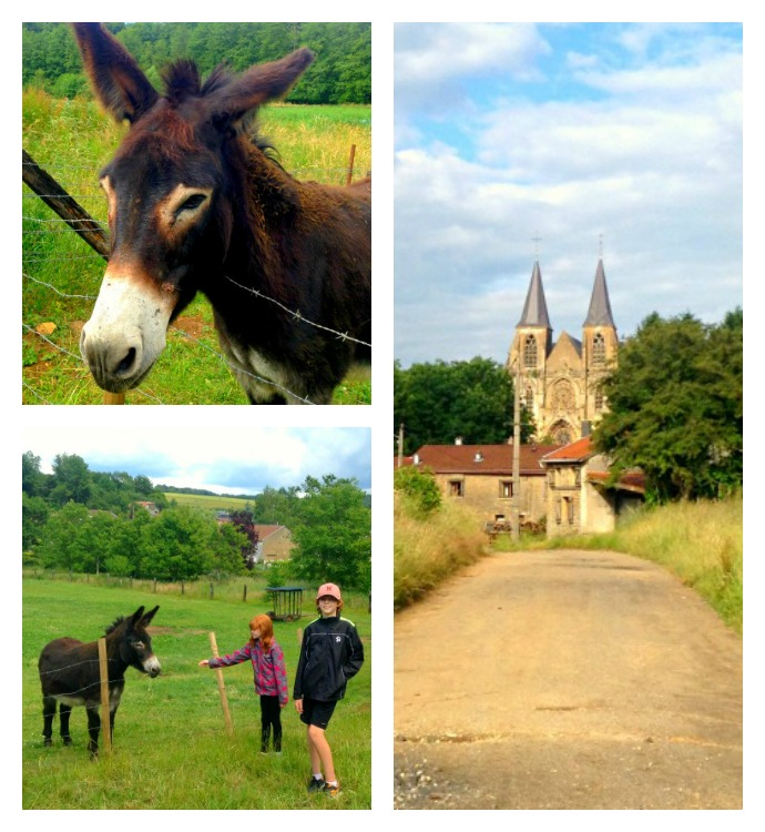 15 km loop hike through the French Countryside in the Verdun area
